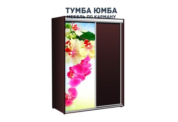 фото недорогой красивый и современный шкаф-купе 1700/450/2100 с раздвижными дверьми с фотопечатью из ЛДСП от производителя в интернет-магазине TUMBA-UMBA™ Украина