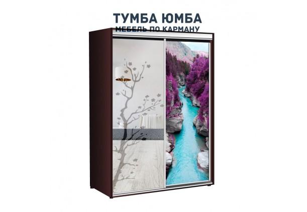 фото недорогой красивый и современный шкаф-купе 1000/450/2100 с раздвижными дверьми с фотопечатью и пескоструйным рисунком из ЛДСП от производителя в интернет-магазине TUMBA-UMBA™ Украина