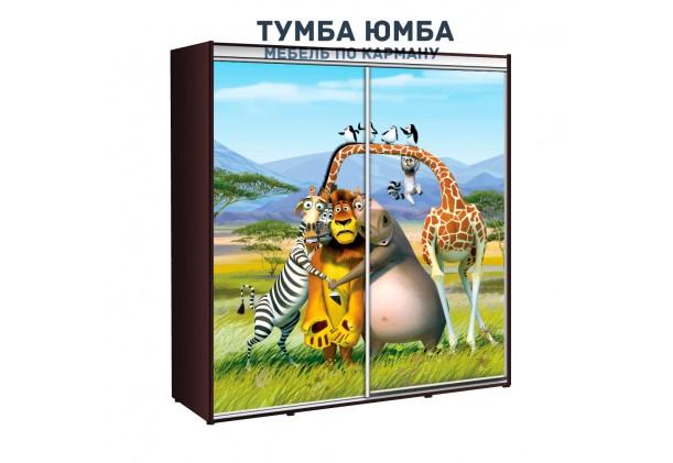 фото недорогой красивый и современный шкаф-купе 1900/450/2100 с раздвижными дверьми фотопечатью из ЛДСП от производителя в интернет-магазине TUMBA-UMBA™ Украина