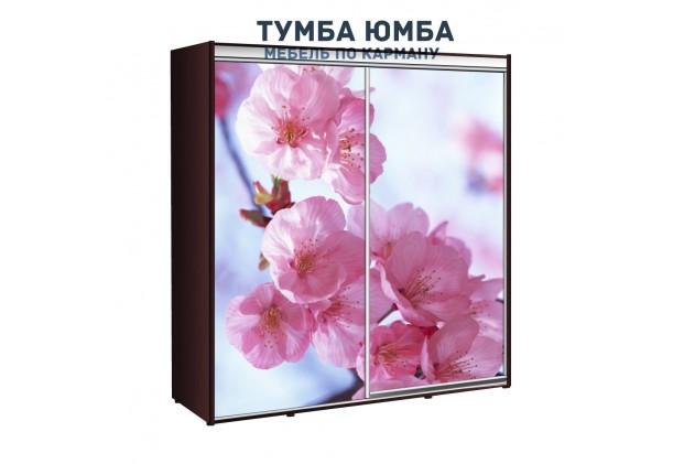 фото недорогой красивый и современный шкаф-купе 2100/450/2100 с раздвижными дверьми с фотопечатью из ЛДСП от производителя в интернет-магазине TUMBA-UMBA™ Украина