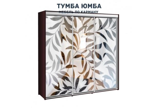 фото недорогой красивый и современный шкаф-купе 2400/450/2100 с раздвижными дверьми с пескоструйным рисунком из ЛДСП от производителя в интернет-магазине TUMBA-UMBA™ Украина