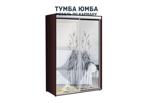 фото недорогой красивый и современный шкаф-купе 1100/450/2100 с раздвижными дверьми с пескоструйным рисунком из ЛДСП от производителя в интернет-магазине TUMBA-UMBA™ Украина