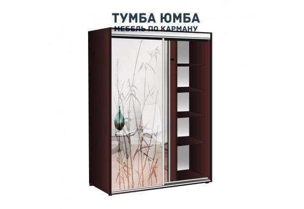 фото недорогой красивый и современный шкаф-купе 1700/600/2100 с раздвижными дверьми и пескоструйным рисунком из ЛДСП от производителя в интернет-магазине TUMBA-UMBA™ Украина