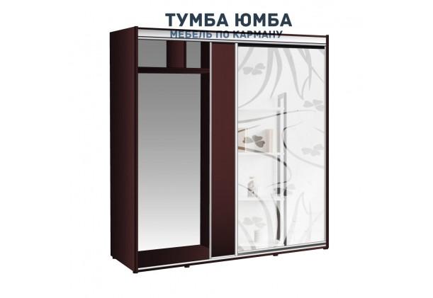 фото недорогой красивый и современный шкаф-купе 1900/600/2100 с раздвижными дверьми и пескоструйным рисунком из ЛДСП от производителя в интернет-магазине TUMBA-UMBA™ Украина