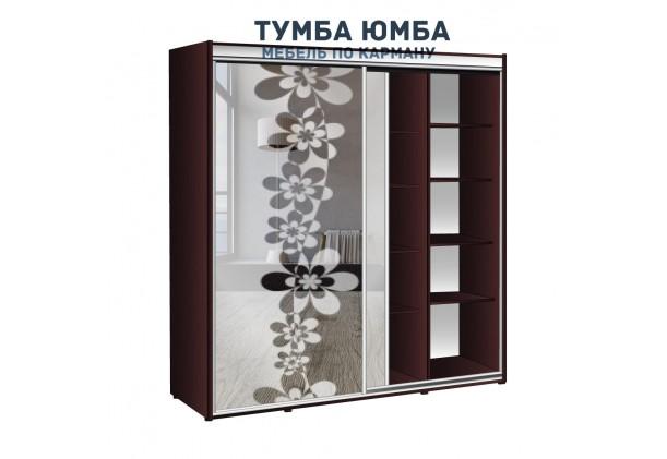 фото недорогой красивый и современный шкаф-купе 2000/600/2100 с раздвижными дверьми и пескоструйным рисунком из ЛДСП от производителя в интернет-магазине TUMBA-UMBA™ Украина