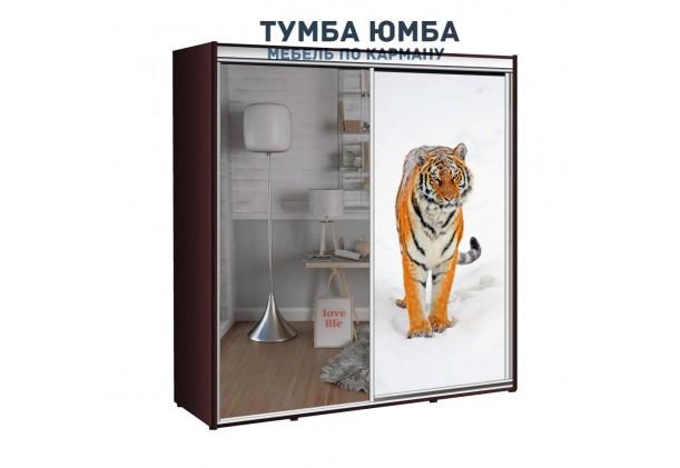 фото недорогой красивый и современный шкаф-купе 2100/600/2100 с раздвижными дверьми с фотопечатью из ЛДСП от производителя в интернет-магазине TUMBA-UMBA™ Украина