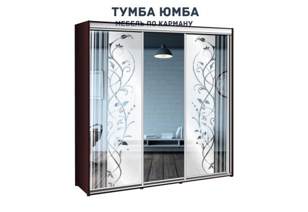 фото недорогой красивый и современный шкаф-купе 2300/600/2100 с раздвижными дверьми и пескоструйным рисунком из ЛДСП от производителя в интернет-магазине TUMBA-UMBA™ Украина