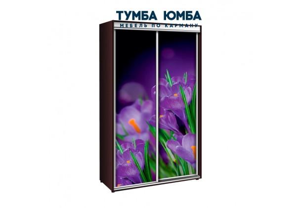 фото недорогой красивый и современный шкаф-купе 1000/450/2400 с раздвижными дверьми с фотопечатью из ЛДСП от производителя в интернет-магазине TUMBA-UMBA™ Украина