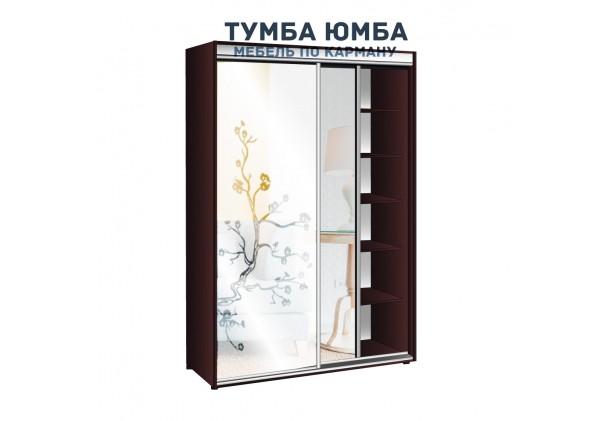 фото недорогой красивый и современный шкаф-купе 1300/450/2400 с раздвижными дверьми и пескоструйным рисунком из ЛДСП от производителя в интернет-магазине TUMBA-UMBA™ Украина