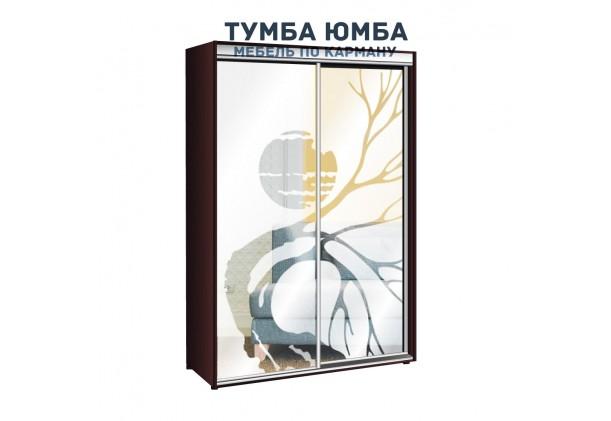 фото недорогой красивый и современный шкаф-купе 1400/450/2400 с раздвижными дверьми с пескоструйным рисунком из ЛДСП от производителя в интернет-магазине TUMBA-UMBA™ Украина