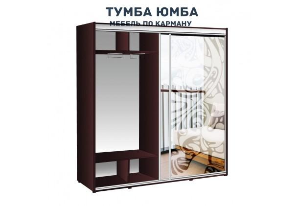 фото недорогой красивый и современный шкаф-купе 2000/450/2400 с раздвижными дверьми и пескоструйным рисунком из ЛДСП от производителя в интернет-магазине TUMBA-UMBA™ Украина