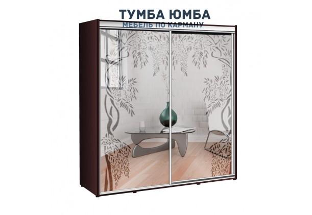 фото недорогой красивый и современный шкаф-купе 2100/450/2400 с раздвижными дверьми и пескоструйным рисунком из ЛДСП от производителя в интернет-магазине TUMBA-UMBA™ Украина
