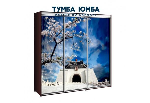 фото недорогой красивый и современный шкаф-купе 2400/450/2400 с раздвижными дверьми с фотопечатью из ЛДСП от производителя в интернет-магазине TUMBA-UMBA™ Украина