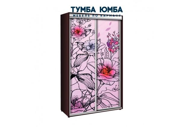 фото недорогой красивый и современный шкаф-купе 1000/600/2400 с раздвижными дверьми с фотопечатью из ЛДСП от производителя в интернет-магазине TUMBA-UMBA™ Украина