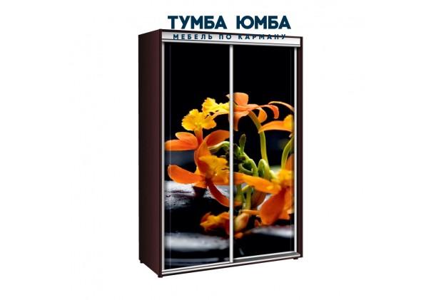 фото недорогой красивый и современный шкаф-купе 1200/600/2400 с раздвижными дверьми с фотопечатью из ЛДСП от производителя в интернет-магазине TUMBA-UMBA™ Украина