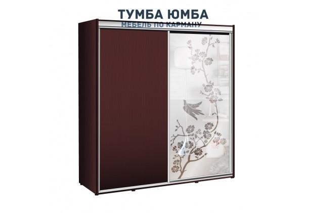 фото недорогой красивый и современный шкаф-купе 1900/600/2400 с раздвижными дверьми и пескоструйным рисунком из ЛДСП от производителя в интернет-магазине TUMBA-UMBA™ Украина