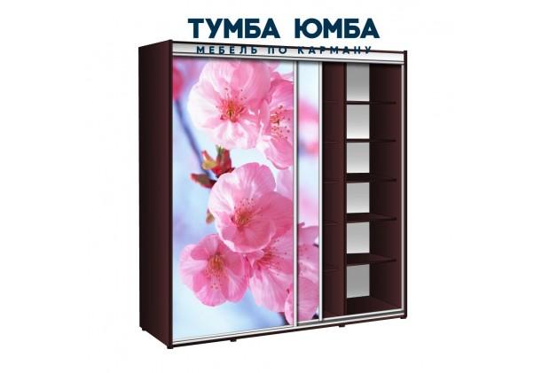 фото недорогой красивый и современный шкаф-купе 2100/600/2400 с раздвижными дверьми с фотопечатью из ЛДСП от производителя в интернет-магазине TUMBA-UMBA™ Украина