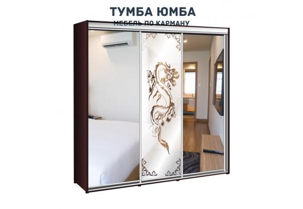 фото недорогой красивый и современный шкаф-купе 2200/600/2400 с раздвижными дверьми с пескоструйным рисунком из ЛДСП от производителя в интернет-магазине TUMBA-UMBA™ Украина
