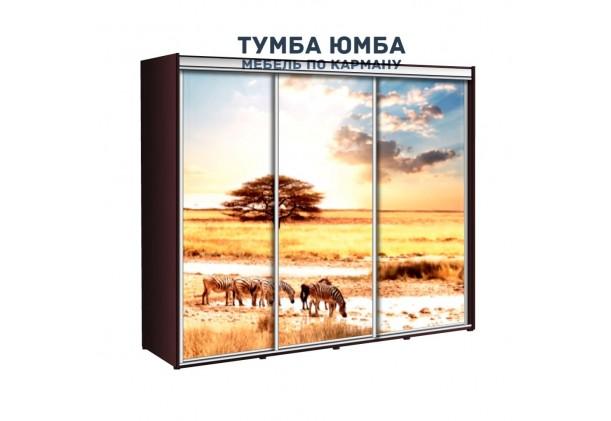 фото недорогой красивый и современный шкаф-купе 2300/600/2400 с раздвижными дверьми и пескоструйным рисунком из ЛДСП от производителя в интернет-магазине TUMBA-UMBA™ Украина