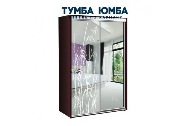 фото недорогой красивый и современный шкаф-купе 1200/450/2200 с раздвижными дверьми с пескоструйным рисунком из ЛДСП от производителя в интернет-магазине TUMBA-UMBA™ Украина