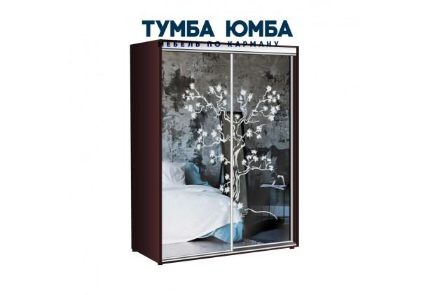 фото недорогой красивый и современный шкаф-купе 1400/450/2200 с раздвижными дверьми с пескоструйным рисунком из ЛДСП от производителя в интернет-магазине TUMBA-UMBA™ Украина
