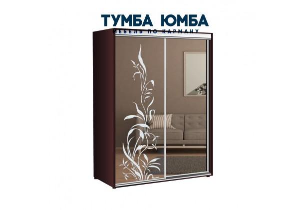 фото недорогой красивый и современный шкаф-купе 1400/600/2200 с раздвижными дверьми с пескоструйным рисунком из ЛДСП от производителя в интернет-магазине TUMBA-UMBA™ Украина