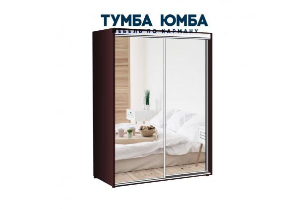 фото недорогой красивый и современный шкаф-купе 1600/450/2200 с раздвижными дверьми с пескоструйным рисунком из ЛДСП от производителя в интернет-магазине TUMBA-UMBA™ Украина