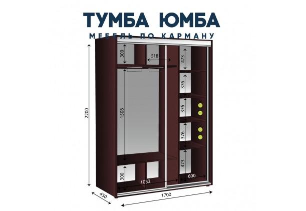 Шкаф-Купе 1700/450/2200