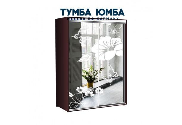 фото недорогой красивый и современный шкаф-купе 1700/450/2200 с раздвижными дверьми с пескоструйным рисунком из ЛДСП от производителя в интернет-магазине TUMBA-UMBA™ Украина