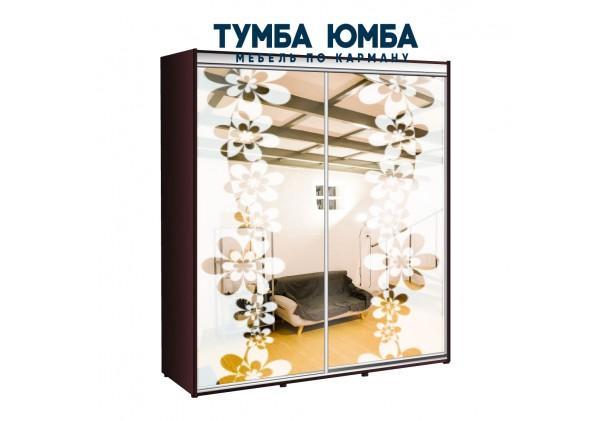 фото недорогой красивый и современный шкаф-купе 2000/450/2200 с зеркальными раздвижными дверьми из ЛДСП от производителя в интернет-магазине TUMBA-UMBA™ Украина