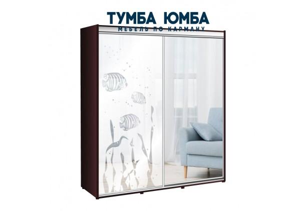 фото недорогой красивый и современный шкаф-купе 2100/450/2200 с раздвижными дверьми с пескоструйным рисунком из ЛДСП от производителя в интернет-магазине TUMBA-UMBA™ Украина