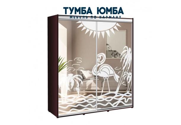 фото недорогой красивый и современный шкаф-купе 2100/600/2200 с раздвижными дверьми c пескоструйным рисунком из ЛДСП от производителя в интернет-магазине TUMBA-UMBA™ Украина