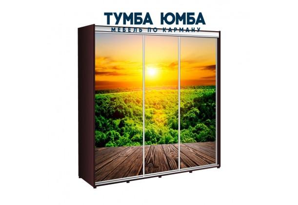 фото недорогой красивый и современный шкаф-купе 2300/450/2200 с раздвижными дверьми с фотопечатью из ЛДСП от производителя в интернет-магазине TUMBA-UMBA™ Украина