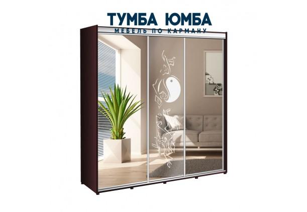 фото недорогой красивый и современный шкаф-купе 2300/600/2200 с раздвижными дверьми с фотопечатью из ЛДСП от производителя в интернет-магазине TUMBA-UMBA™ Украина