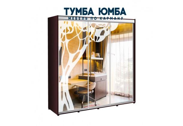 фото недорогой красивый и современный шкаф-купе 2400/450/2200 с раздвижными дверьми с пескоструйным рисунком из ЛДСП от производителя в интернет-магазине TUMBA-UMBA™ Украина