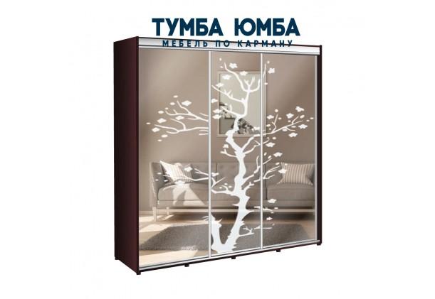 фото недорогой красивый и современный шкаф-купе 2400/600/2200 с раздвижными дверьми с пескоструйным рисунком из ЛДСП от производителя в интернет-магазине TUMBA-UMBA™ Украина