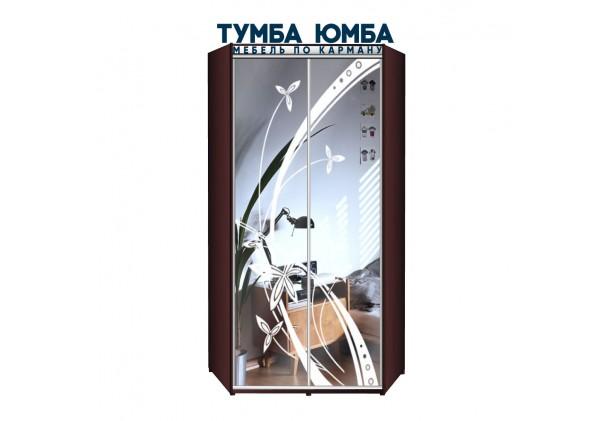 фото недорогой красивый и современный угловой шкаф-купе 1000/1000/2200 с раздвижными дверьми с фотопечатью из ЛДСП от производителя в интернет-магазине TUMBA-UMBA™ Украина