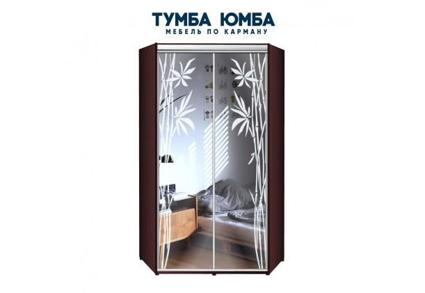 фото недорогой красивый и современный шкаф-купе 1200/1200/2200 с раздвижными дверьми с пескоструйным рисунком из ЛДСП от производителя в интернет-магазине TUMBA-UMBA™ Украина