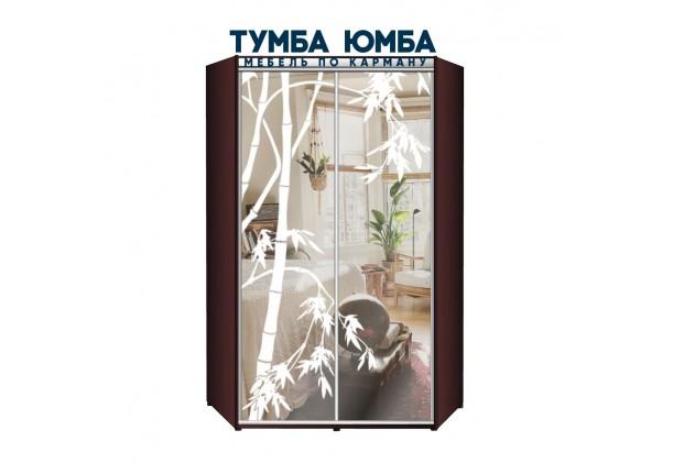 фото недорогой красивый и современный шкаф-купе 1500/1500/2200 с раздвижными дверьми с пескоструйным рисунком из ЛДСП от производителя в интернет-магазине TUMBA-UMBA™ Украина