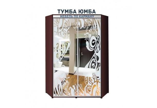 фото недорогой красивый и современный шкаф-купе 1200/1200/2100 с раздвижными дверьми с пескоструйным рисунком из ЛДСП от производителя в интернет-магазине TUMBA-UMBA™ Украина