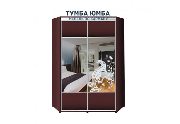 фото недорогой красивый и современный шкаф-купе 1400/1400/2100 с раздвижными дверьми с пескоструйным рисунком из ЛДСП от производителя в интернет-магазине TUMBA-UMBA™ Украина