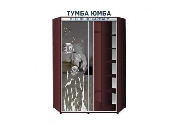 фото недорогой красивый и современный угловой шкаф-купе 1100/1100/2400 с раздвижными дверьми с фотопечатью из ЛДСП от производителя в интернет-магазине TUMBA-UMBA™ Украина