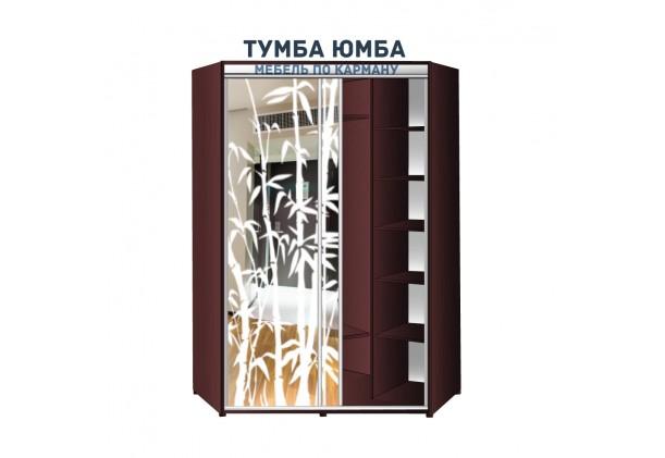 фото недорогой красивый и современный шкаф-купе 1400/1400/2400 с раздвижными дверьми с пескоструйным рисунком из ЛДСП от производителя в интернет-магазине TUMBA-UMBA™ Украина