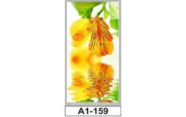 Фотопечать А1-159 для шкафа-купе на одну дверь. Цветы