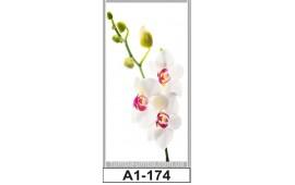 Фотопечать А1-174 для шкафа-купе на одну дверь. Цветы