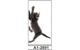Фотопечать А1-2891 для шкафа-купе на одну дверь. Котёнок