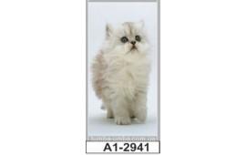 Фотопечать А1-2941 для шкафа-купе на одну дверь. Котёнок