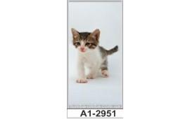 Фотопечать А1-2951 для шкафа-купе на одну дверь. Котёнок
