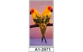 Фотопечать А1-2971 для шкафа-купе на одну дверь. Попугаи