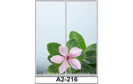 Фотопечать А2-216 для шкафа-купе на две двери. Цветы